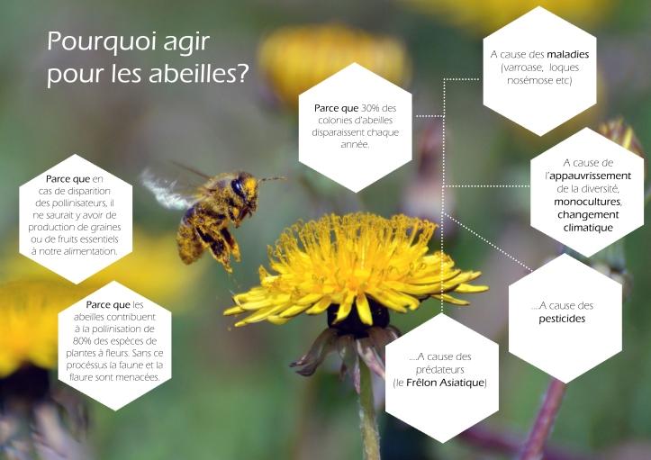 Action Abeilles_01-2